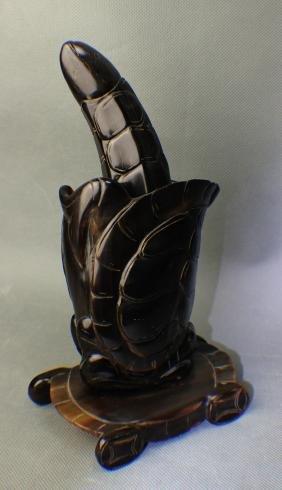 A Tortoise Shell Jar & Hammer for Plant Medicine