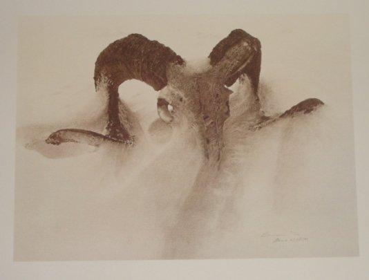 1: Sheep Skull In Drift Signed LE James Bama