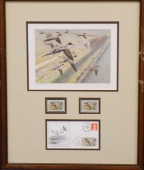 United Kingdom First Of Nation Duck Stamp Print 1991