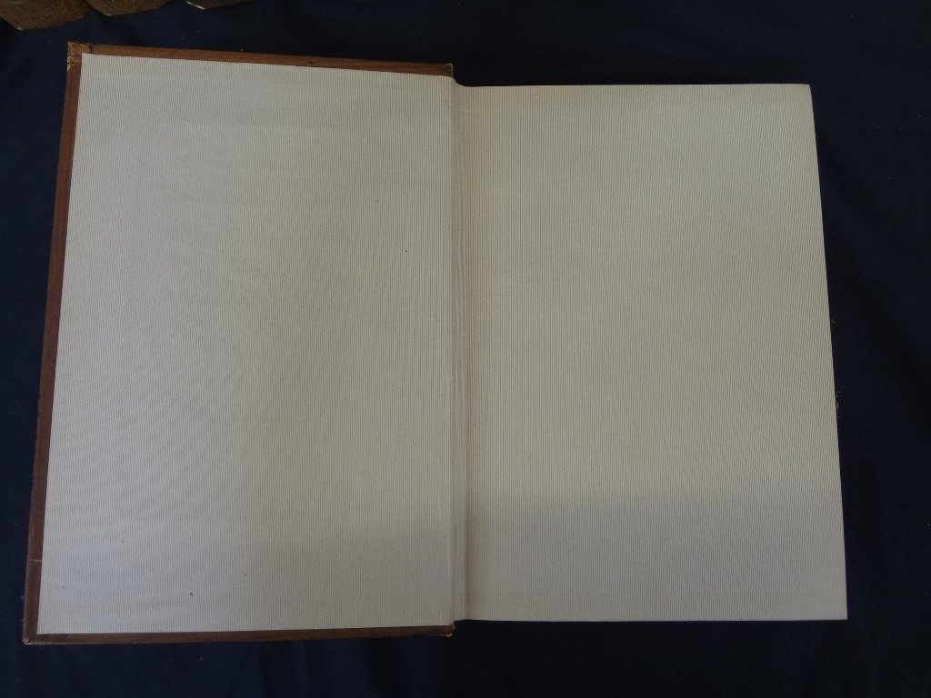 Collier's New Encyclopedia 10 Volumes 1921 Brown - 3