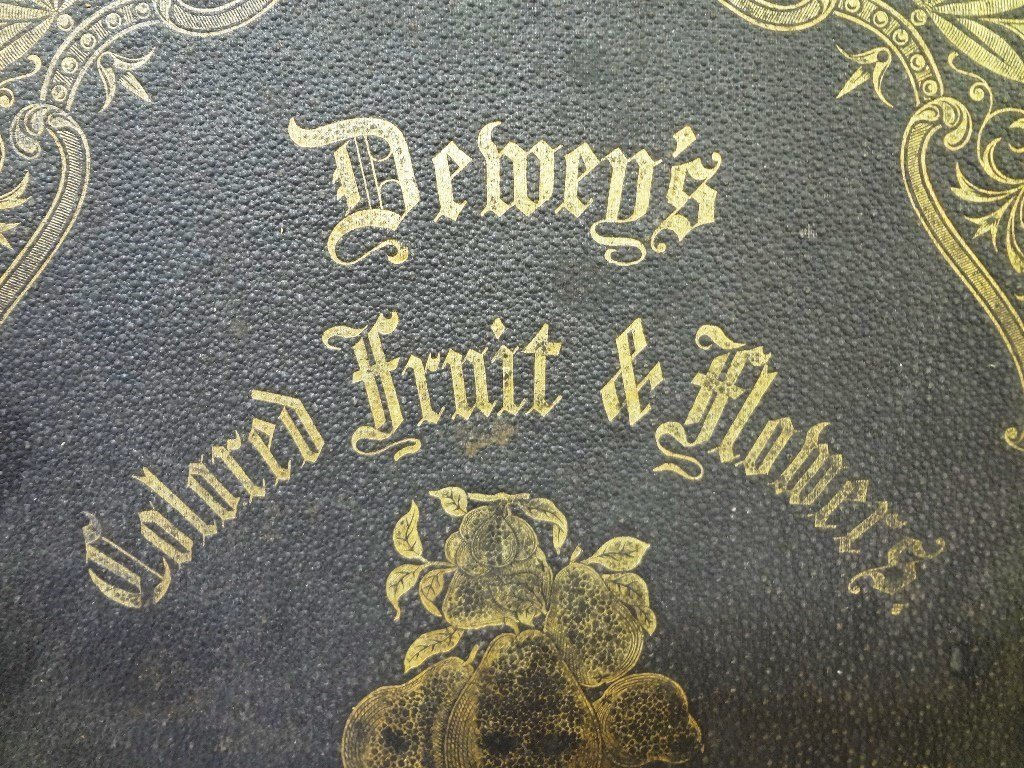 Dewey's The Colored Fruit Book: For Use of Nurserymen - 2