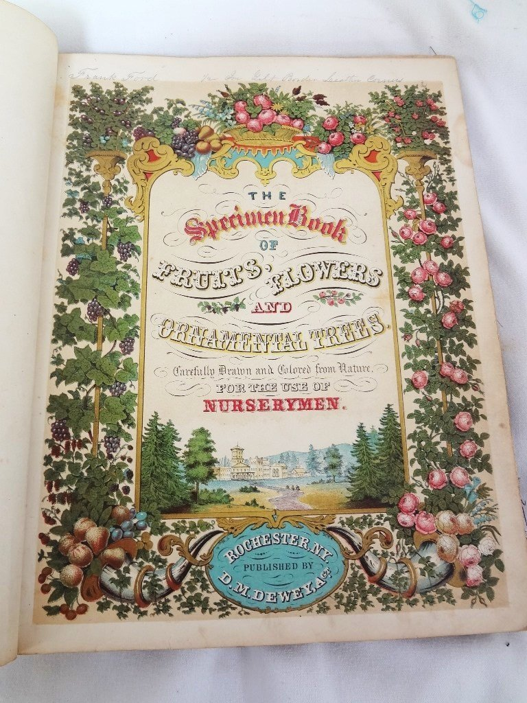 Dewey's The Colored Fruit Book: For Use of Nurserymen - 3