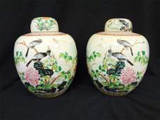 Pair of Ching Dynasty Lidded Vases Bird and Floral