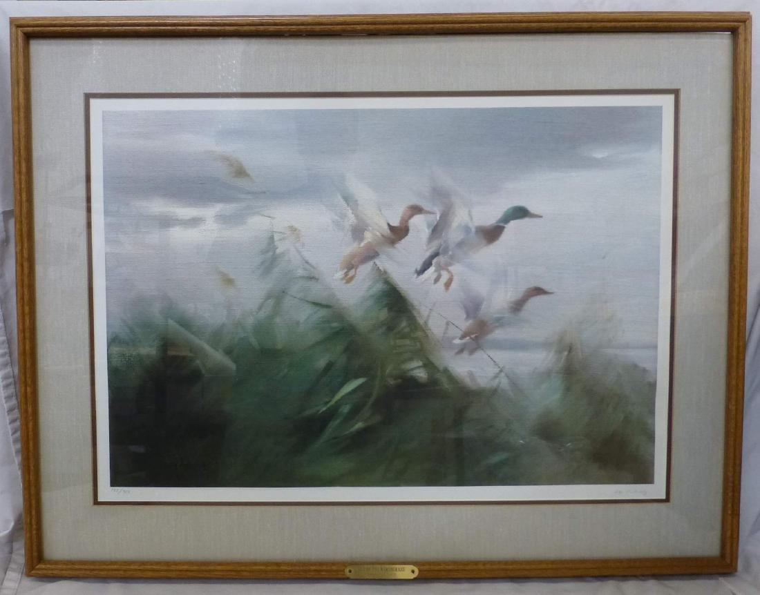 Manfred Schatz Duck Print Out of the Marshgrass