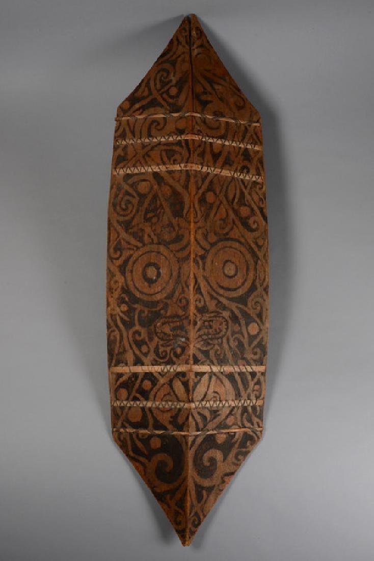 """Shield """"kliau"""" - Indonesia - Borneo, Dayak"""