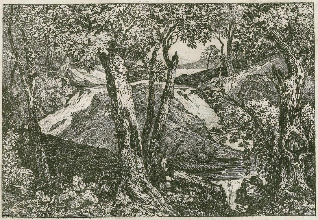 Waterfall at the baths of Schooley. USA. 1840.