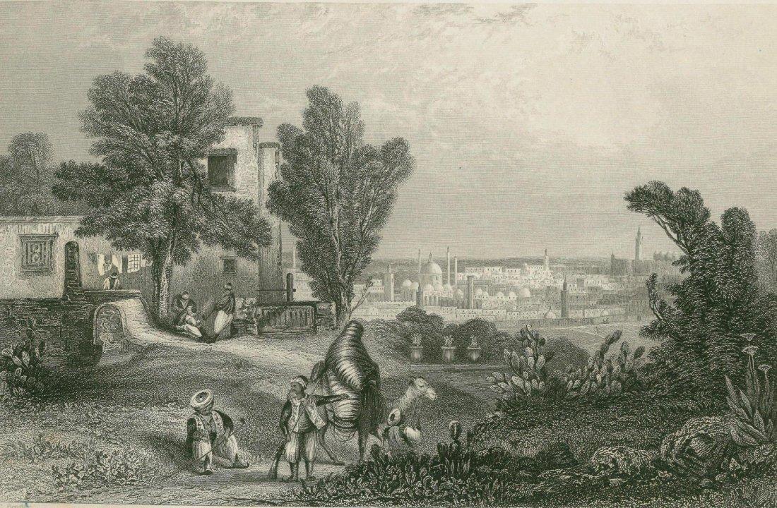 Tunis, from the Saneeah Eftoor. Africa. 1839.