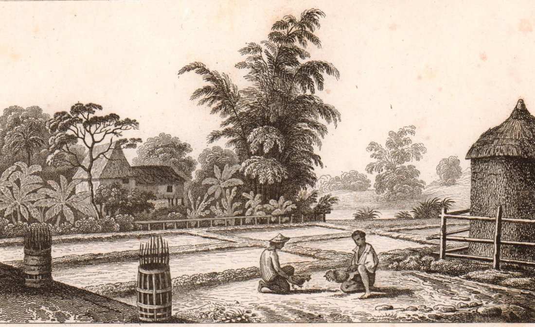 Settlement at Loucon Luzon  Island. Philippines. 1836.