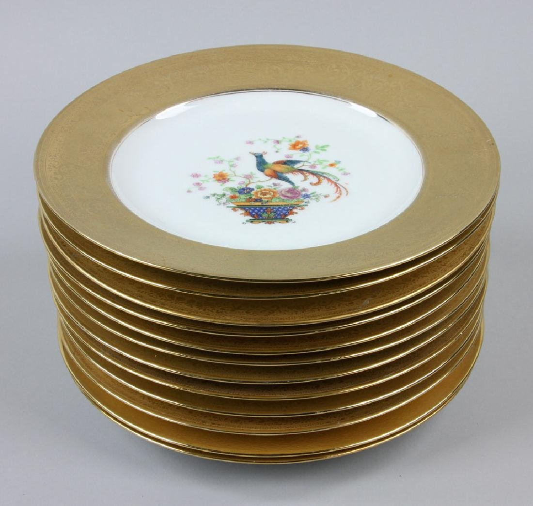 12 Thomas Bavaria Dinner Plates