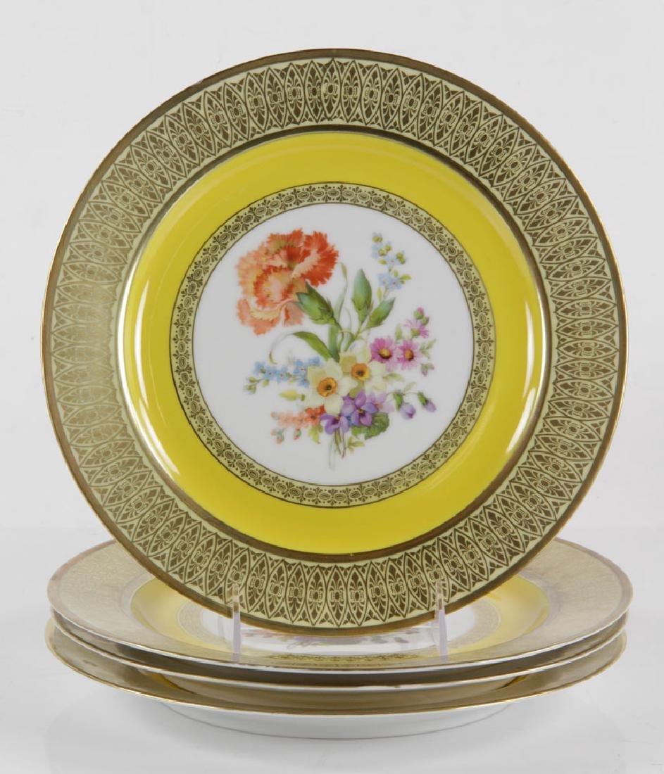 Set of Bavarian Dinner Plates - 10