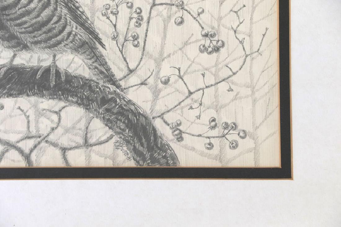 Drawing of Grouse on Branch - 3