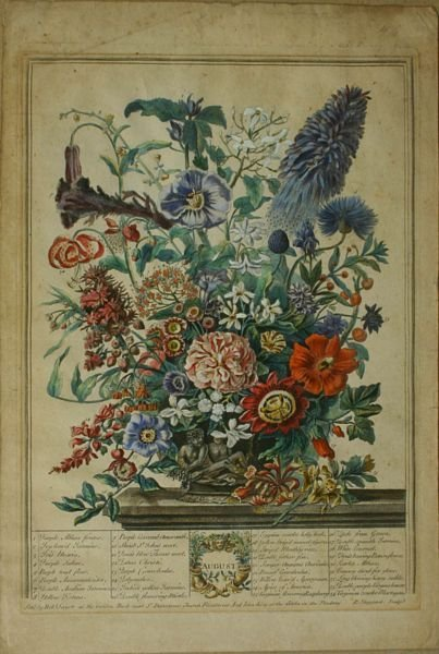 3: SHEPPARD, AUGUST, HAND COLOR ENGR, 18th C.