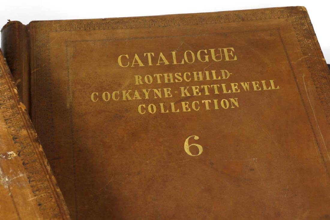 Rothschild Cockayne Kettlewell Collection - 3