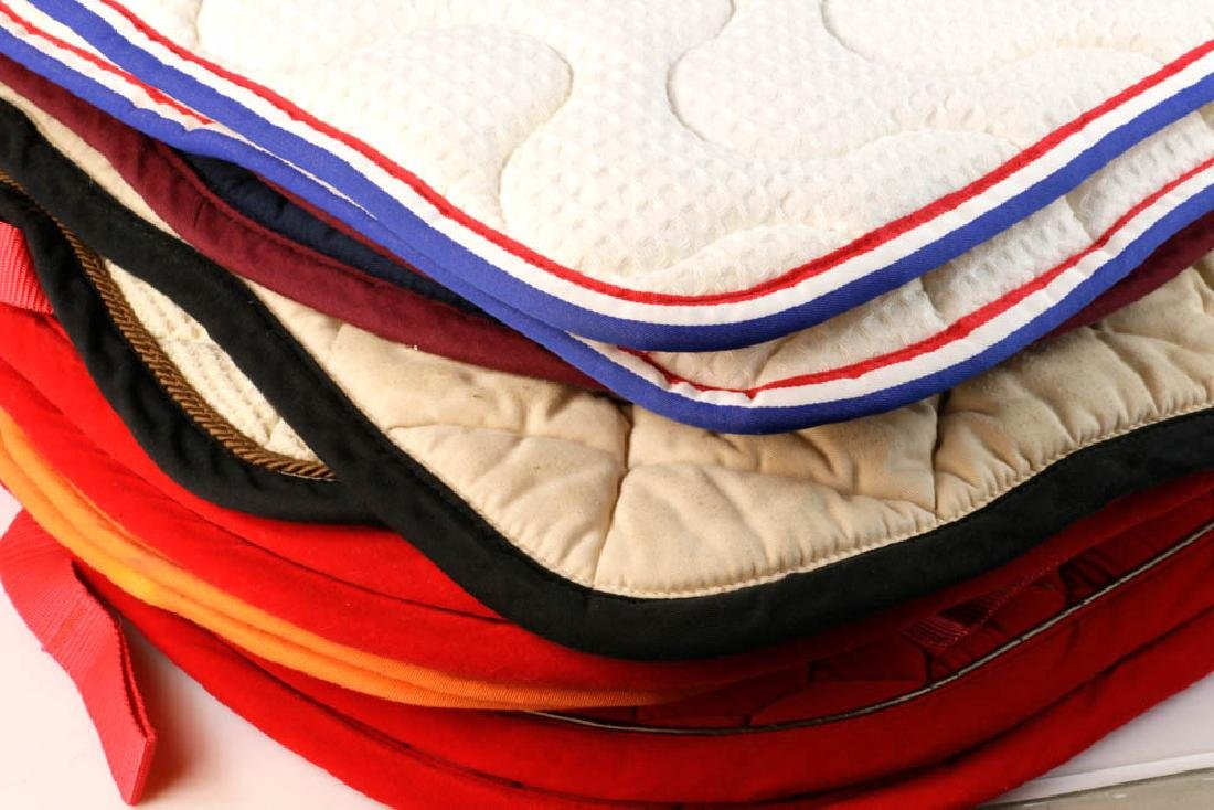 White Horse Stables Equestrian Blankets - 2
