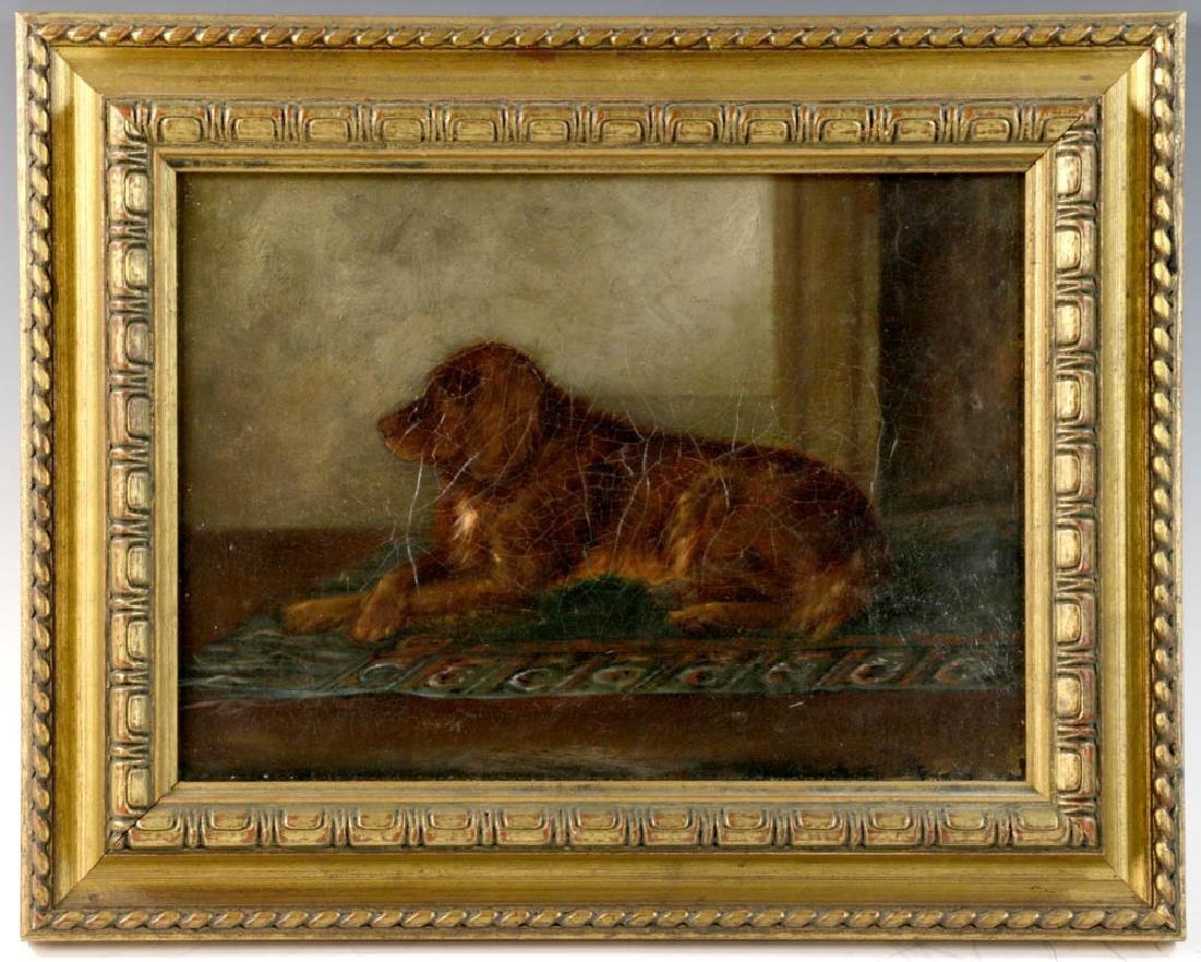 Portrait of English Golden Labrador