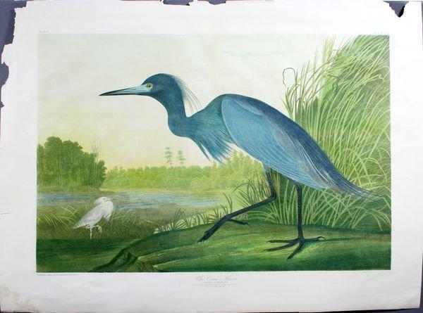 2001: J.J. Audubon, Bien Edition Blue Heron, Chromo