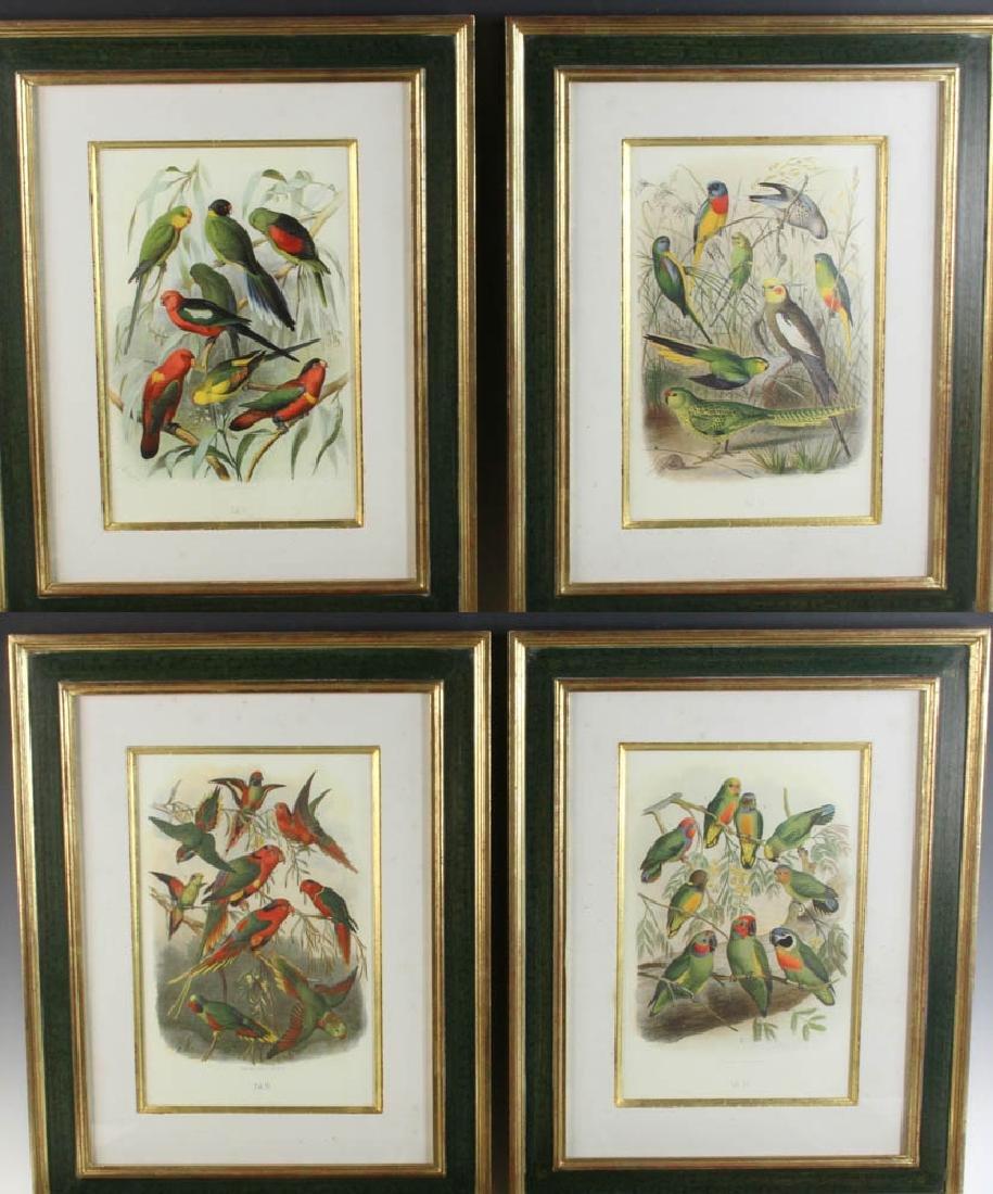 Four Antique Colored Prints of Birds
