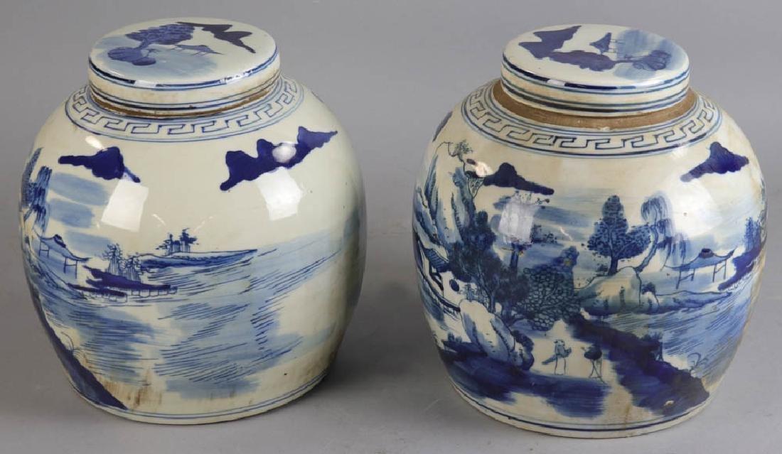 Pair of Chinese Porcelain Ginger Jars - 2