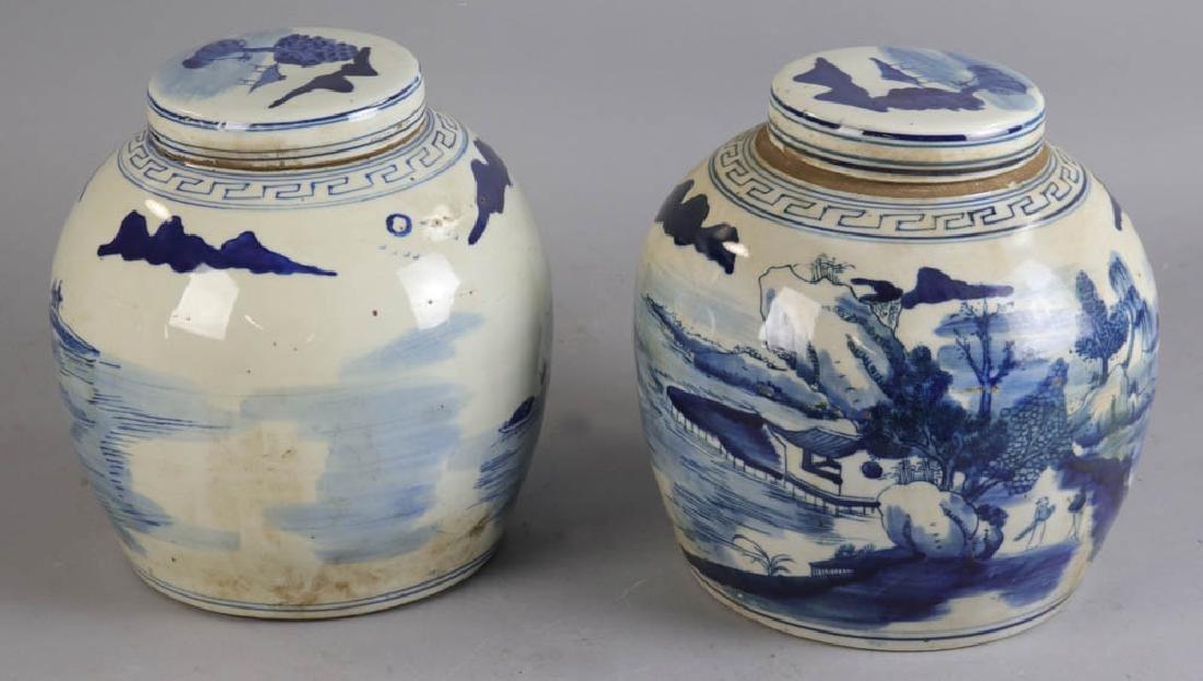 Pair of Chinese Porcelain Ginger Jars - 3