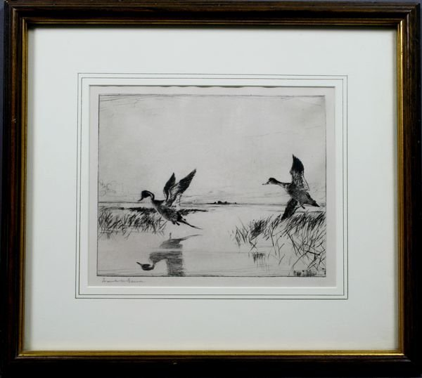 "1012: Frank W. Benson, ""Pair of Pintails"", Sgnd."