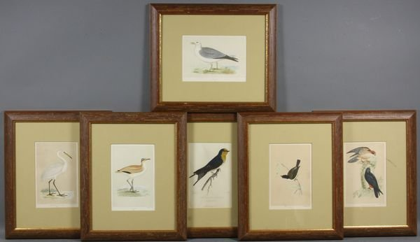 2: Group of (6) 20th Century Framed Bird Prints