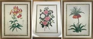 Three Floral Prints