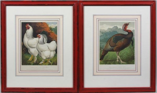 11: Pair of Late 19th C. Chromolithographs