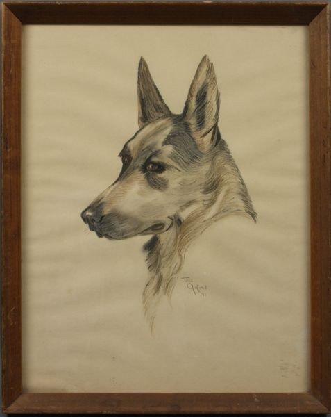 Tony Gafford, German Shepherd Dog, Crayon