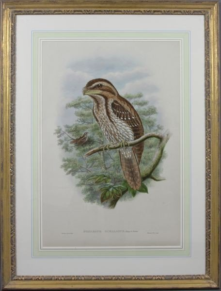 5011: 19th C. Handcolored Print by W. Hart