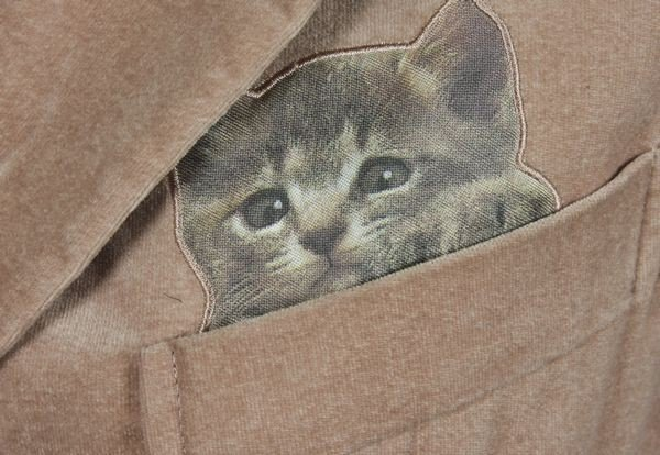5229: Moschino Velvet Cat Blazer - 2