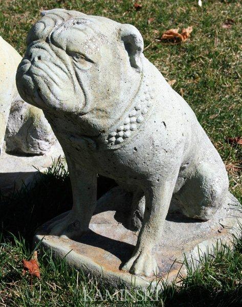 1114: British Bulldog