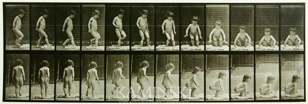 "7002: Muybridge, ""Animal Locomotion"", Collotype"
