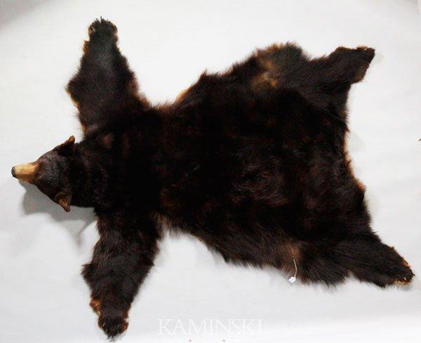 5003: Bear Skin Rug