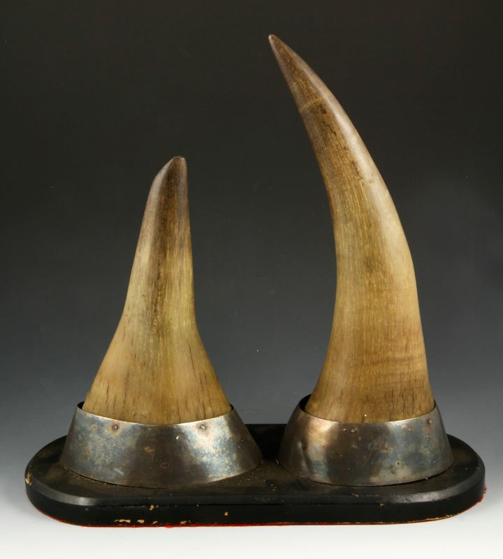 Chinese Antique Pair of Rhinoceros Horns