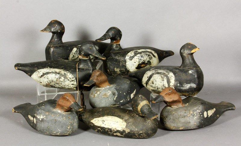 8 19th C. Decoy Ducks
