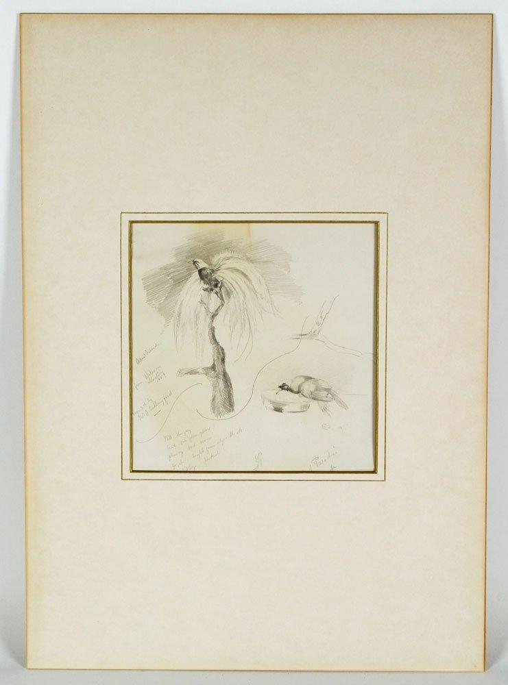 Russel Wallace, Sketchbook Drawings, Graphite