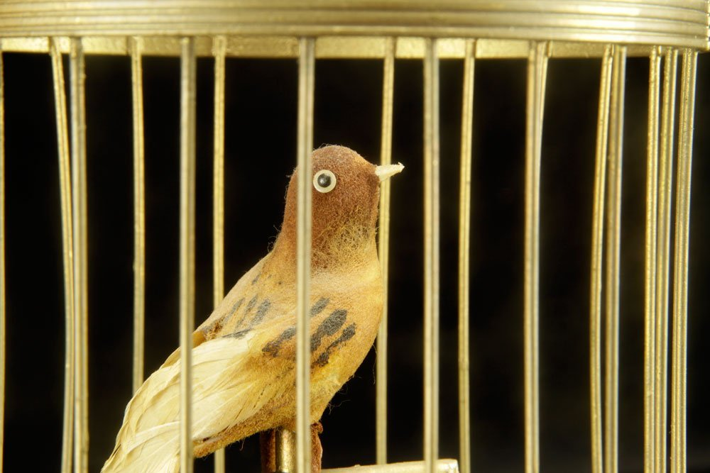 French Musical Bird Cage - 4