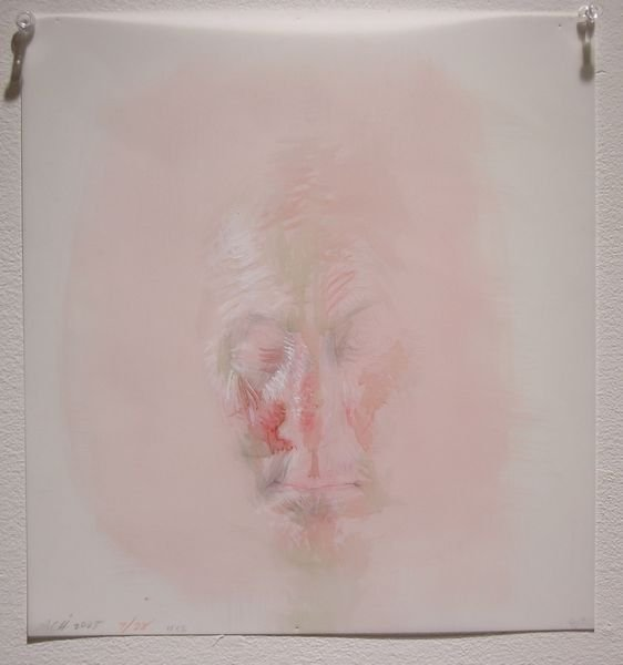 1009: Anne Harris, Oil, Watercolor, Graphite on Mylar