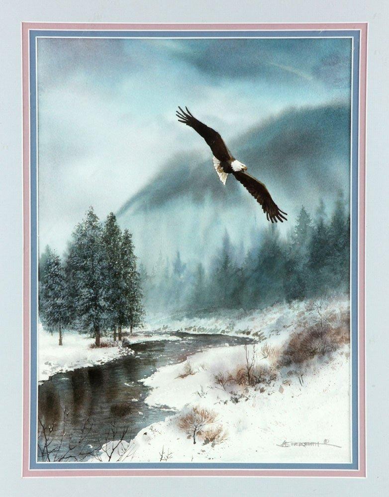 Flying Bald Eagle, Watercolor - 3