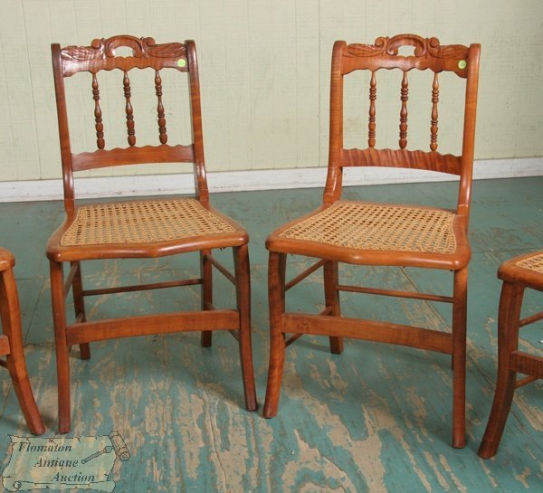 2: Set of six mid 1800 saber leg dining chairs, solid t