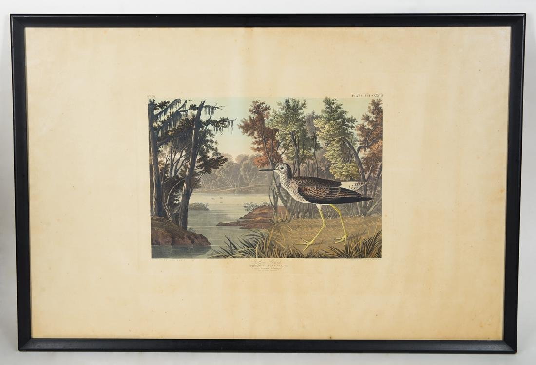 "19TH C. AUDUBON LITHOGRAPH Hand-colored, ""No. 58, Plate"