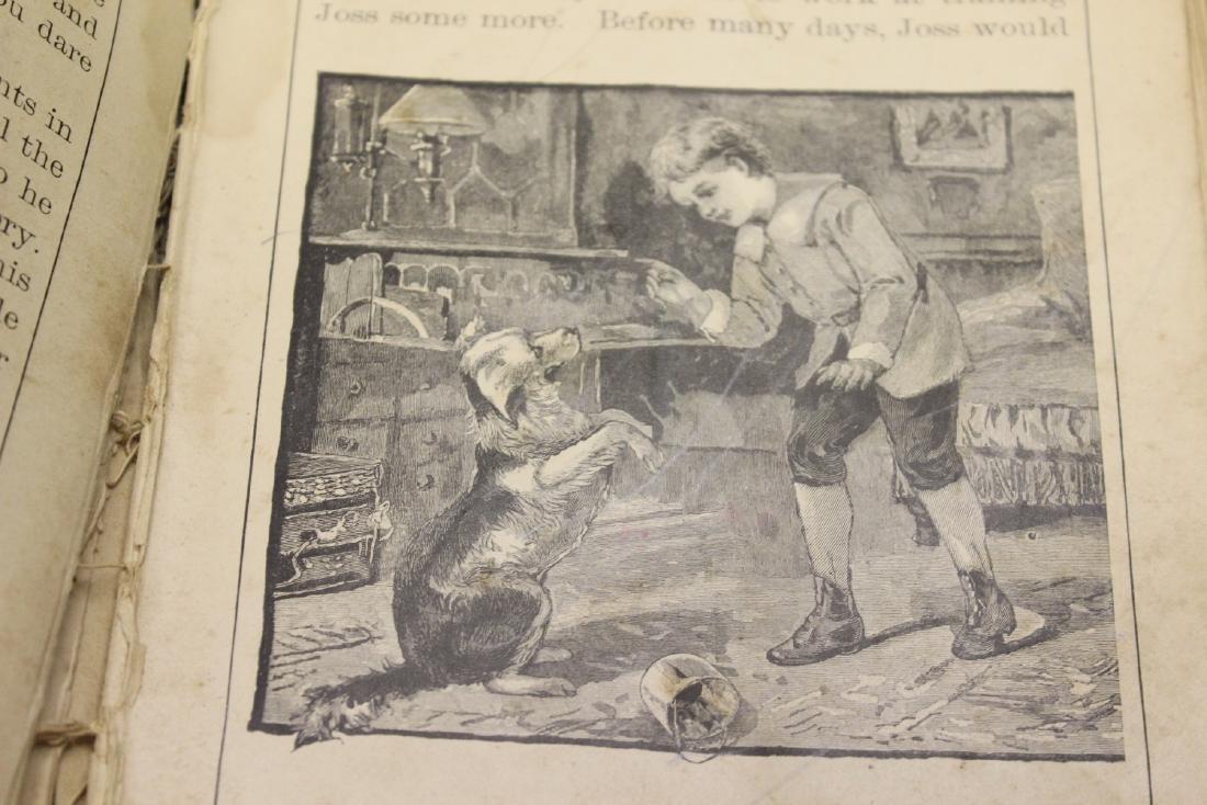 A Third Reader - 1894 Children's Book - 6
