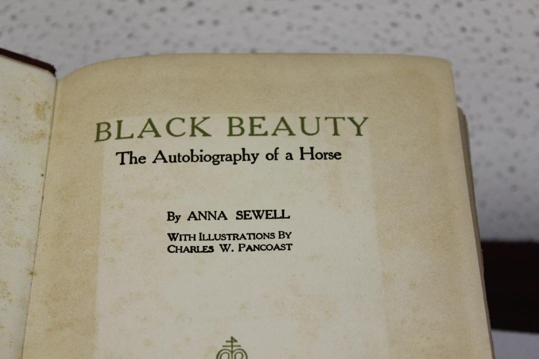 Black Beauty by Anna Sewell - 2