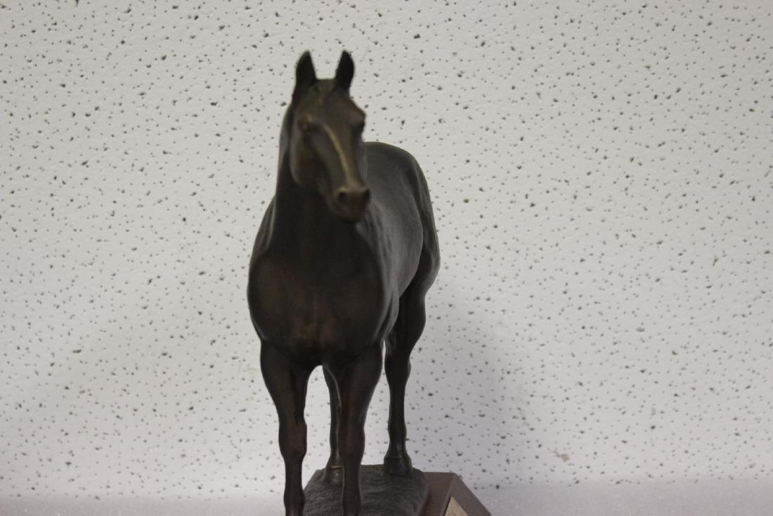 A Metal Horse - 4