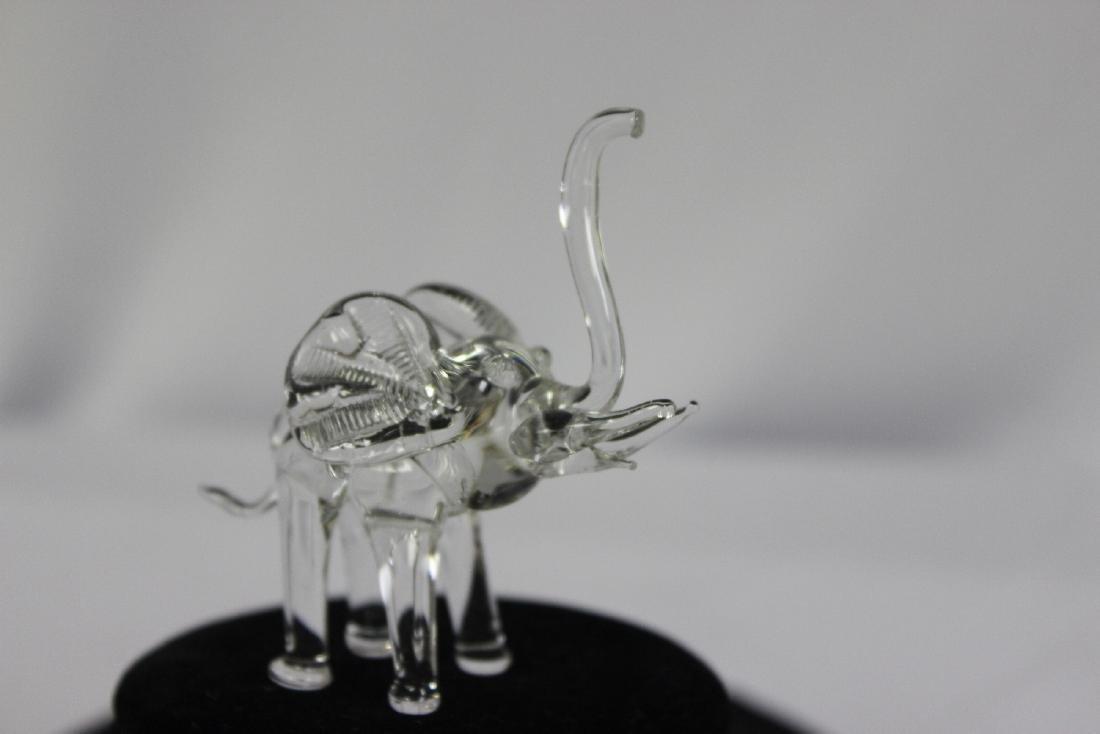A Clear Glass Elephant - 3