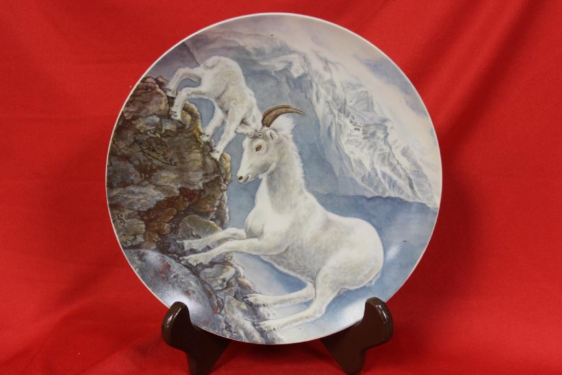 A Collector's Plate by Yin-Rei Hicks