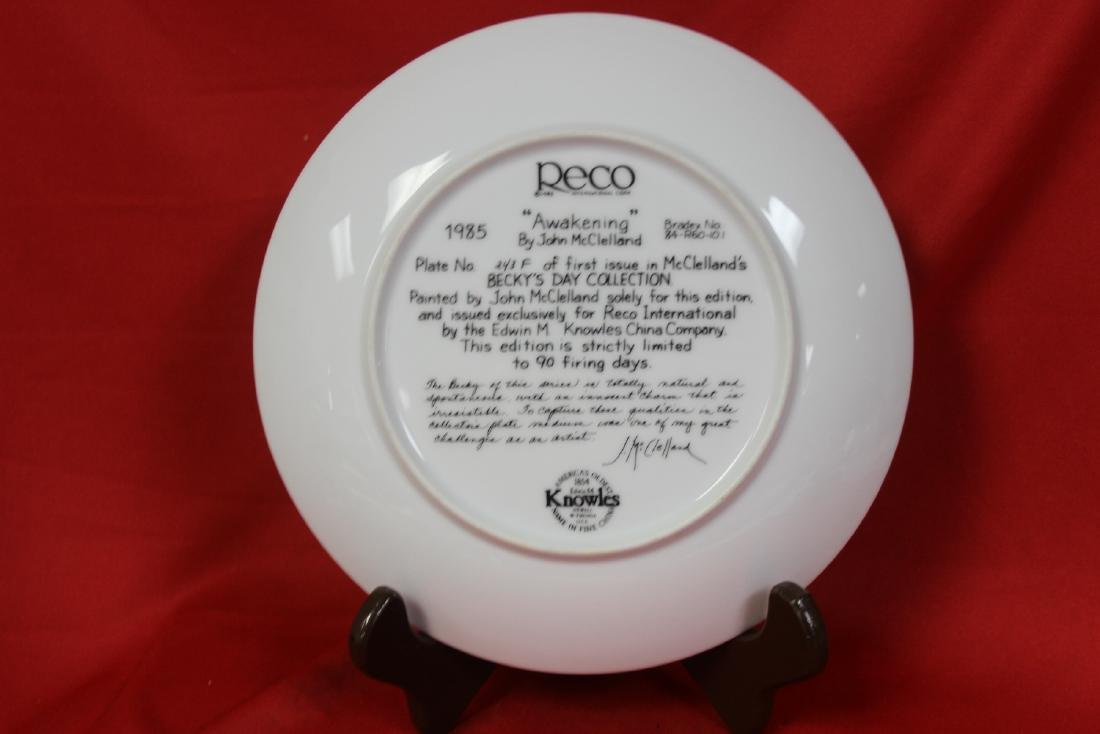A Collector's Plate - 3