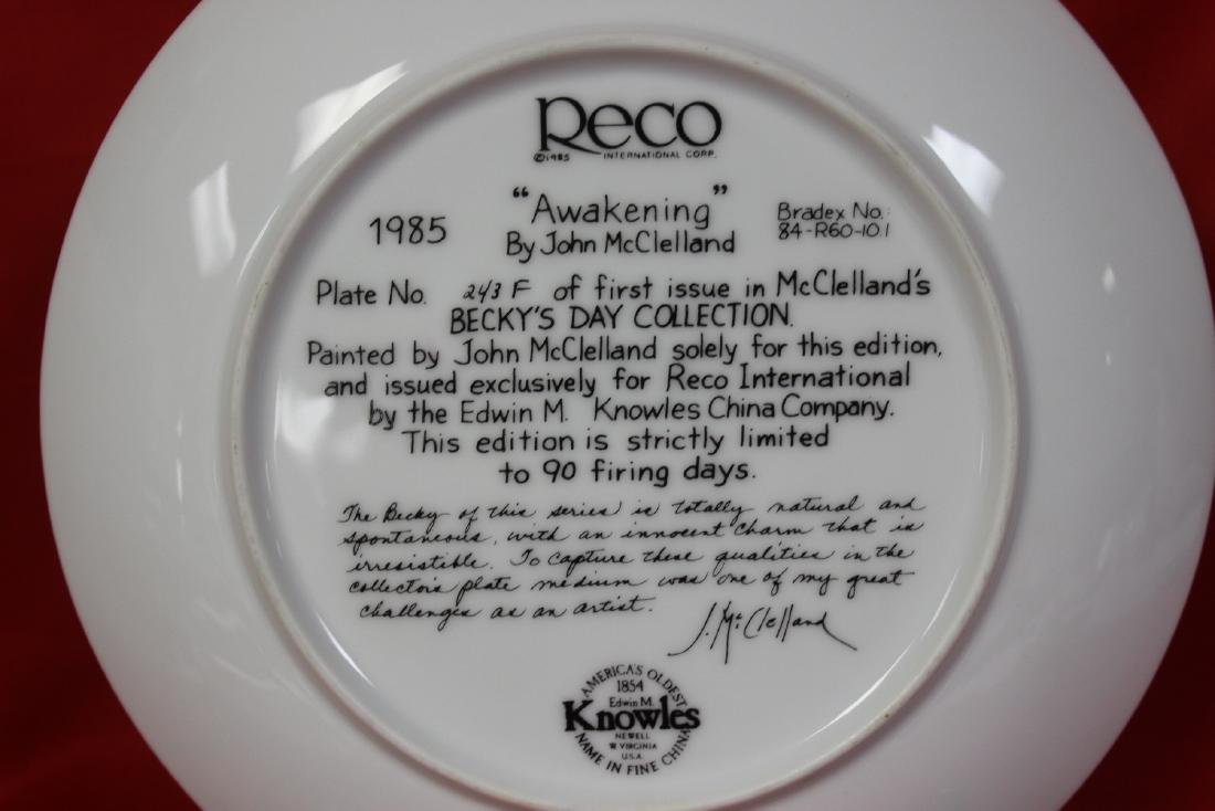 A Collector's Plate - 4