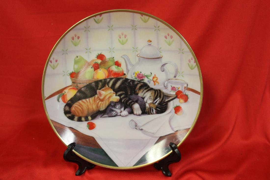 A Collector's Plate by Turi MacCromlin