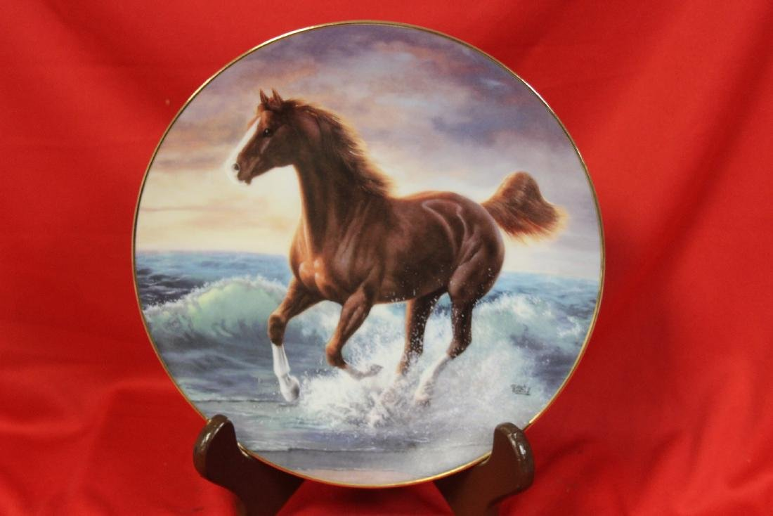 A Collector's Plate on Horse by Dehaan